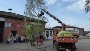 Der Maibaum wird geschmückt und Tanz in den Mai